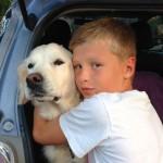 Helena Ahnberg - En liten pojke och hans hund